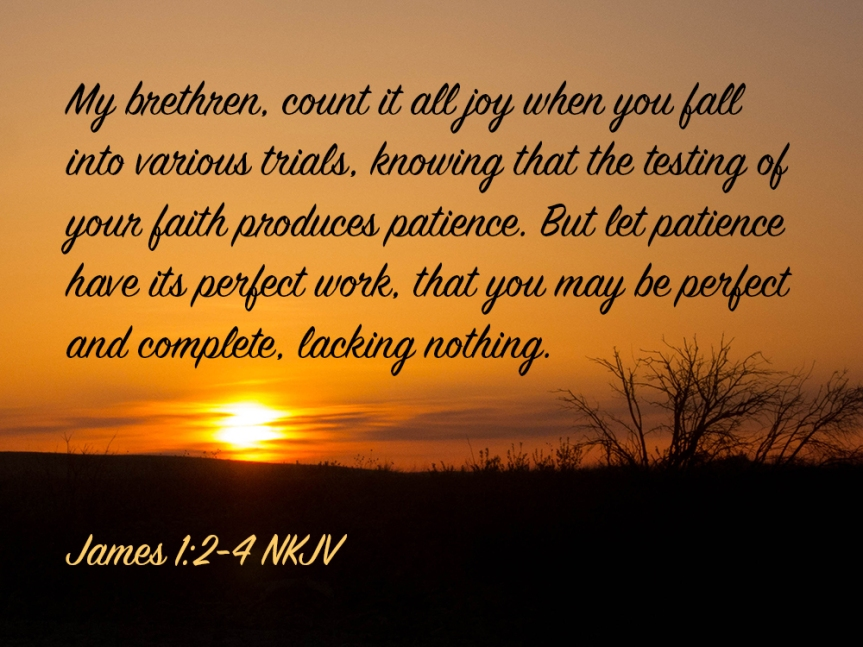 james-1_2-4-img_7625-joy-trials-testing-faith-patience-perfect.jpg